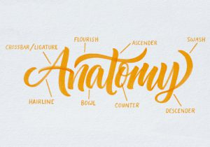 tierney-brush-lettering3