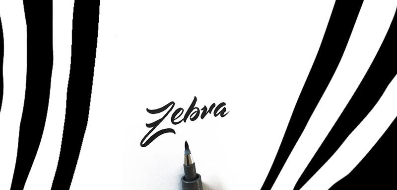 Zebra Brush Pens
